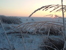 Zingsthof, Bodden im Winter